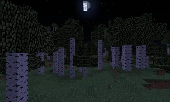 Birch Forest M Minecraft Seeds